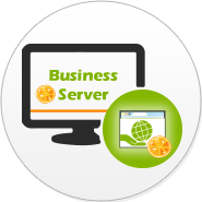 Business Webserver